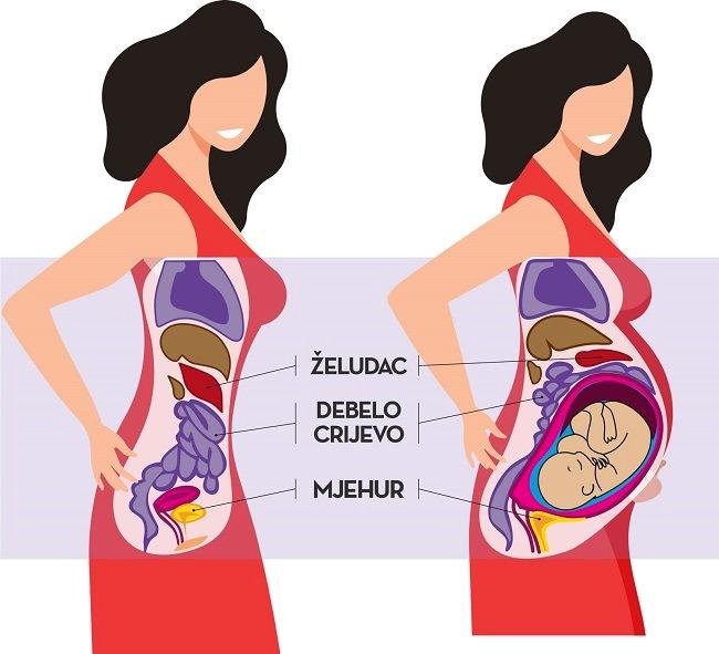Kako beba raste treba sve više mjesta, pritišće želudac, crijeva i mjehur-Kivilaks